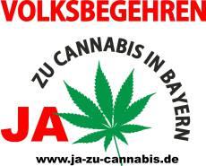 neues gesetz cannabis